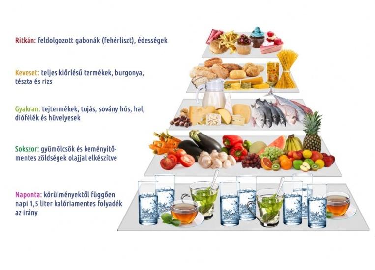 Premium fogyás táplálékpiramis